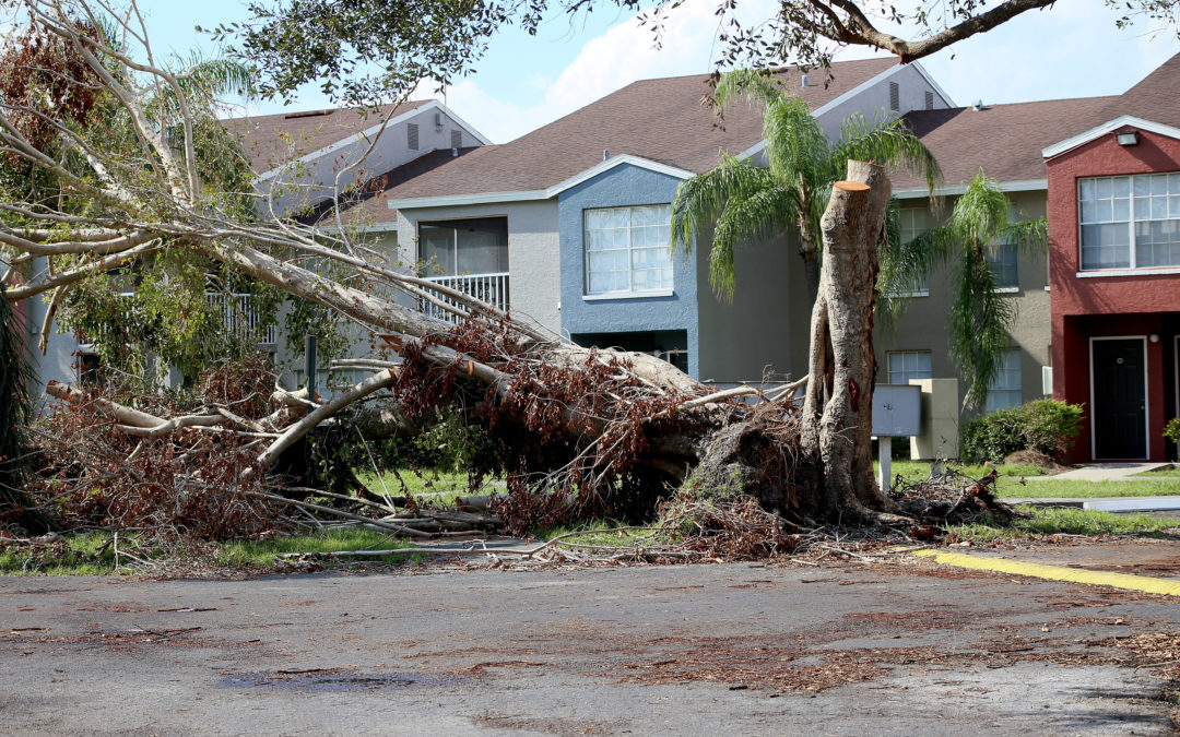 It's hurricane season: This is what you need to do before, during, and after a disaster